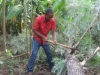 Emmanuel helping cut up the tree to remove it.